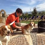 Daniele adotta cani
