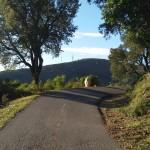 La strada verso Vignale